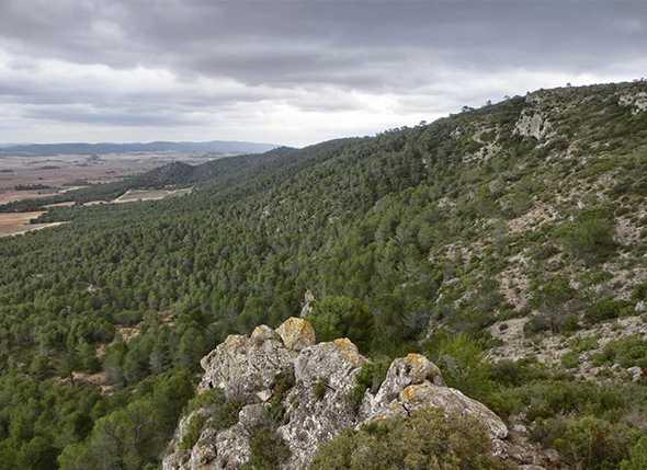 Itinerario de Montañismo por la Rambla del Yeso y la Loma de la Solana