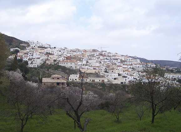 Itinerario vía verde. Bédar-Garrucha