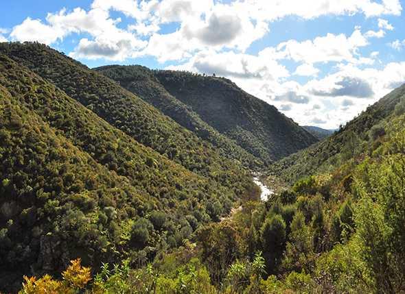 Itinerarios de Montañismo por el Parque Natural de Cardeña Montoro