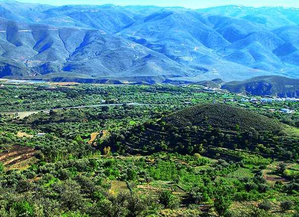 Itinerario de Senderismo por la Sierra de Gádor: Los Pradillos (Alcolea)