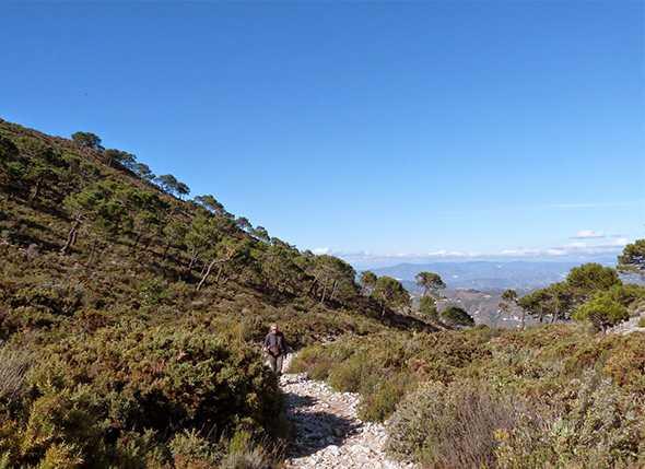 72 Montañeros en el Sendero de Los Pradillos del pasado 3 de marzo