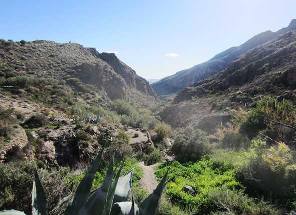 Cóndor realiza la ruta por Los Molinos de Huebro