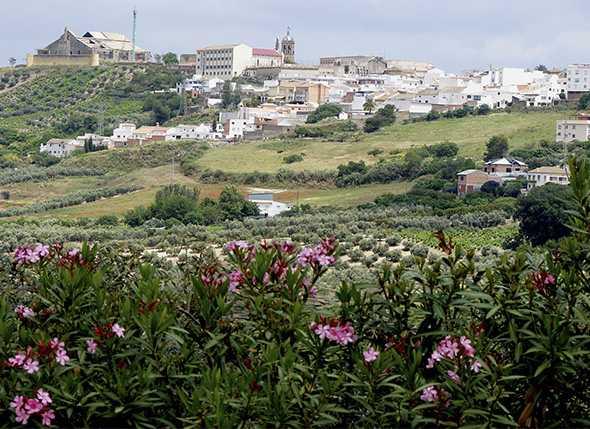 III Travesía Joven de Montilla 2012 (Córdoba)