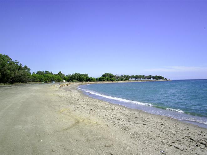 Salvemos Mojácar y Cóndor denuncian destrozos ambientales en la playa de Palomares y exigen su paralización a la Junta