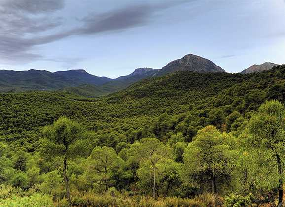 Itinerarios de montañismo por Sierra Espuña