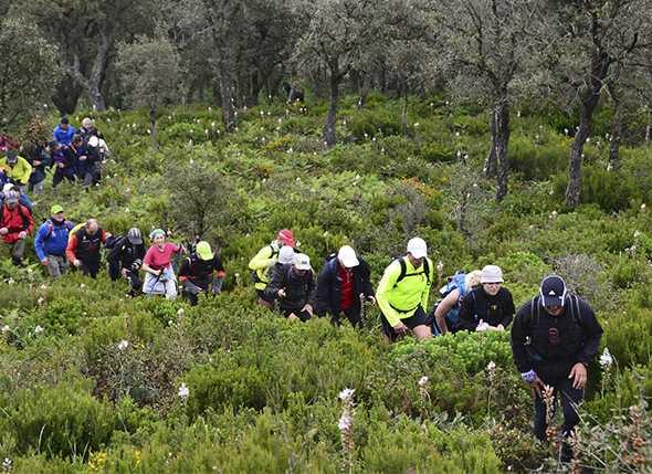 En marcha la 2ª Copa Andaluza de Travesías Infantiles y Juveniles 2012
