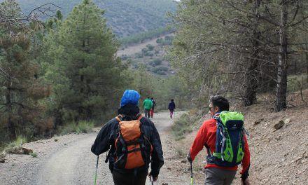 Actividades de Marcha Nórdica en Almería (2017-2018) Grupo Cóndor