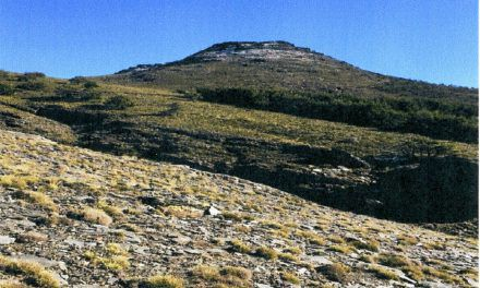 Subida al Cerro del Almiréz, el sábado, 24 de febrero de 2018
